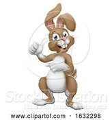 Vector Illustration of Easter Bunny Rabbit Thumbs up and Pointing by AtStockIllustration