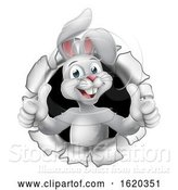 Vector Illustration of Easter Bunny Thumbs up Coming out of Background by AtStockIllustration