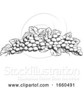 Vector Illustration of Grapes Bunch Vine and Leaves Woodcut Etching Style by AtStockIllustration