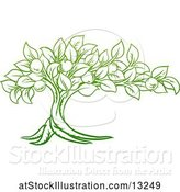 Vector Illustration of Green Apple Tree Design by AtStockIllustration