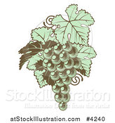 Vector Illustration of Green Grapes with Leaves in Woodblock by AtStockIllustration