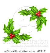 Vector Illustration of Green Holly Leaves and Christmas Berries by AtStockIllustration
