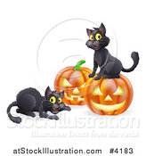 Vector Illustration of Happy Black Cats Playing by Halloween Pumpkins by AtStockIllustration