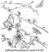 Vector Illustration of Lineart Scene of Cherry Blossoms and Butterflies by AtStockIllustration