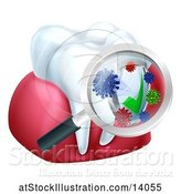 Vector Illustration of Magnifying Glass over a Tooth and Gums, Displaying Bacteria and a Shield by AtStockIllustration