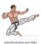 Vector Illustration of Muscular Kung Fu Martial Artist Kicking by AtStockIllustration