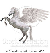 Vector Illustration of Pegasus, Rearing up on Its Hind Legs by AtStockIllustration