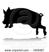 Vector Illustration of Pig Silhouette Farm Animal, with a Reflection or Shadow, on a White Background by AtStockIllustration