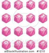 Vector Illustration of Pink Cube Icons: Page Forward, Page Back, Upload, Download, Email, Snail Mail, Envelope, Refresh, News, Www, Home Page, and Information by AtStockIllustration