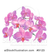 Vector Illustration of Purple or Pink Orchid Flowers by AtStockIllustration