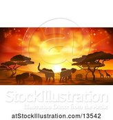 Vector Illustration of Safari Scene of Silhouetted African Animals, Giraffes, Rhinos, Elephants and Lions, Under Acacia Trees at Sunset by AtStockIllustration