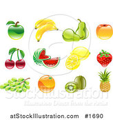 Vector Illustration of Shiny Organic Fruit Icons by AtStockIllustration