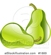 Vector Illustration of Shiny Organic Green Pears by AtStockIllustration