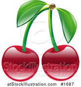 Vector Illustration of Shiny Organic Red Cherries by AtStockIllustration