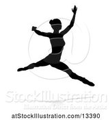 Vector Illustration of Silhouetted Ballerina Dancing with a Reflection or Shadow, on a White Background by AtStockIllustration