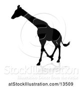 Vector Illustration of Silhouetted Giraffe, with a Reflection or Shadow by AtStockIllustration