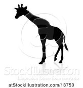 Vector Illustration of Silhouetted Giraffe with a Shadow on a White Background by AtStockIllustration