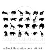 Vector Illustration of Silhouetted Lions, Giraffes, Elephants, and Rhinos by AtStockIllustration