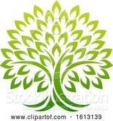 Vector Illustration of Tree Icon Concept of a Stylised Tree with Leaves by AtStockIllustration