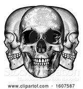 Vector Illustration of Trio of Human Skulls, Black and White Vintage Etched Style by AtStockIllustration