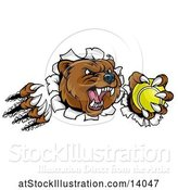 Vector Illustration of Vicious Aggressive Bear Mascot Slashing Through a Wall with a Tennis Ball in a Paw by AtStockIllustration