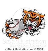 Vector Illustration of Vicious Tiger Mascot Breaking Through a Wall with a Baseball by AtStockIllustration