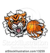 Vector Illustration of Vicious Tiger Mascot Breaking Through a Wall with a Basketball by AtStockIllustration