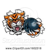 Vector Illustration of Vicious Tiger Mascot Breaking Through a Wall with a Bowling Ball by AtStockIllustration