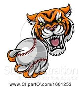 Vector Illustration of Vicious Tiger Sports Mascot Grabbing a Baseball by AtStockIllustration