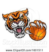 Vector Illustration of Vicious Tiger Sports Mascot Grabbing a Basketball by AtStockIllustration