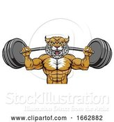 Vector Illustration of Wildcat Mascot Weight Lifting Body Builder by AtStockIllustration
