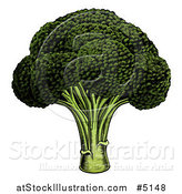 Vector Illustration of Woodblock Broccoli Crown by AtStockIllustration