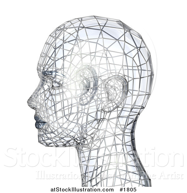Illustration of a 3d Silver Wire Head in Profile