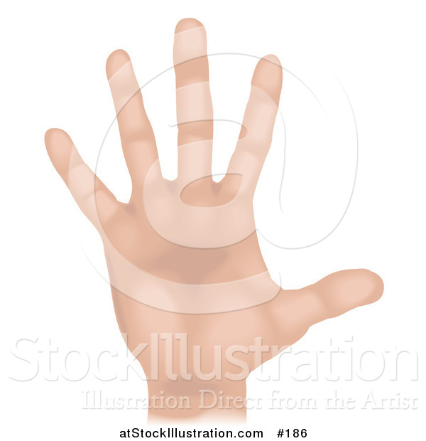 Illustration of a Caucasian Human Hand and Fingers