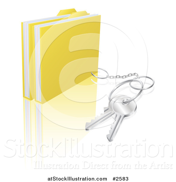 Vector Illustration of 3d Secure Files with a Key Ring