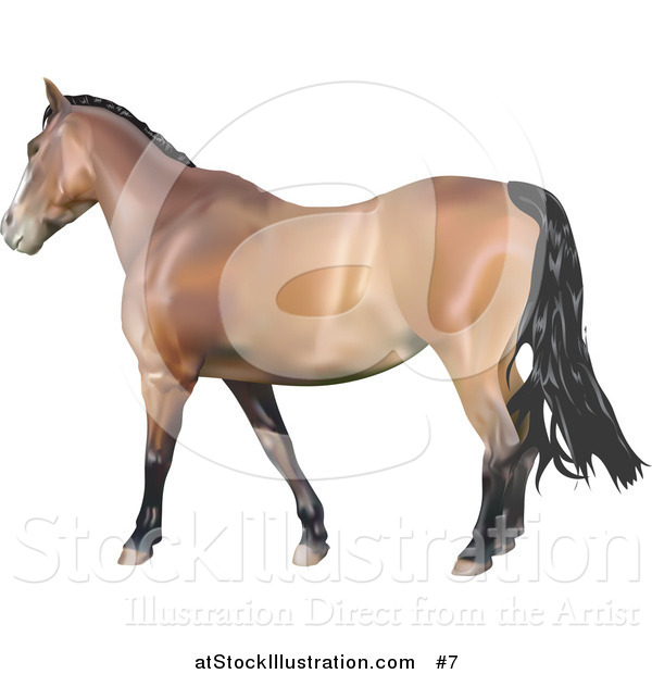 Vector Illustration of a 3D Brown Horse with a Black Mane