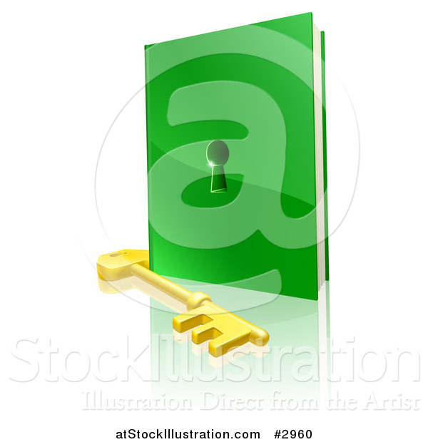 Vector Illustration of a 3d Gold Skeleton Key and Green Book with a Hole