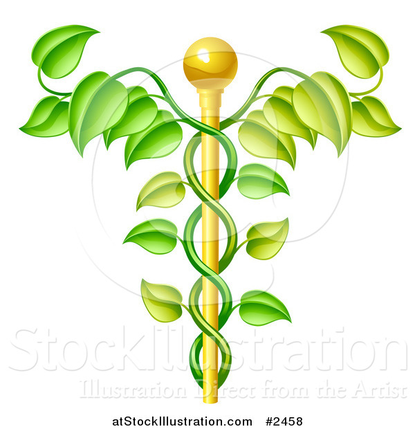 Vector Illustration of a 3d Natural Vine and Gold Staff Caduceus