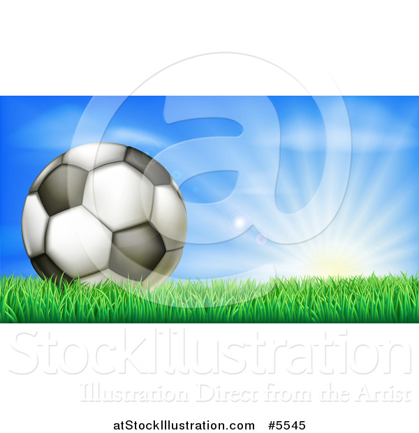 Vector Illustration of a 3d Soccer Ball in Grass at Sunrise