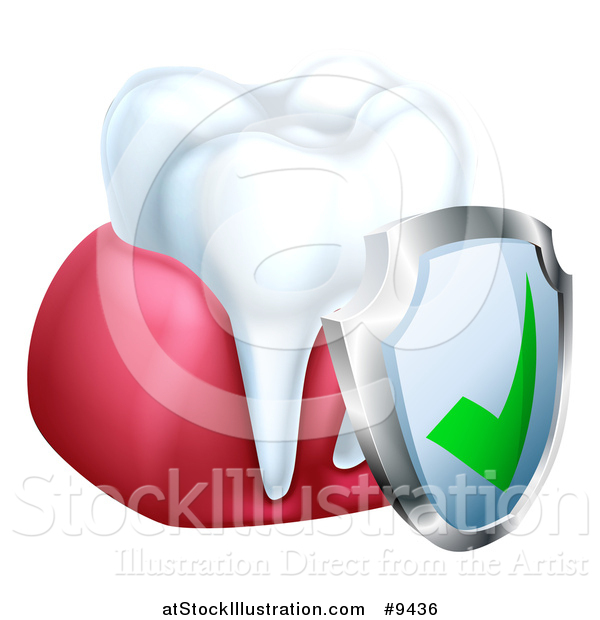 Vector Illustration of a 3d White Tooth and Gums with a Protective Dental Shield