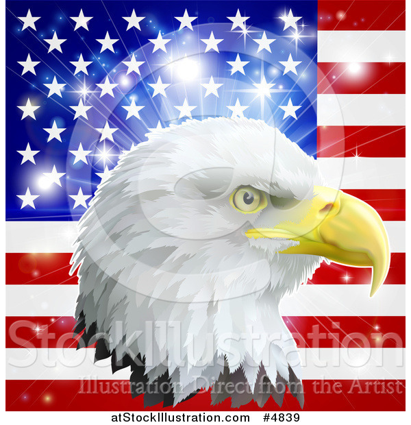 Vector Illustration of a Bald Eagle Head over an American Flag and Burst