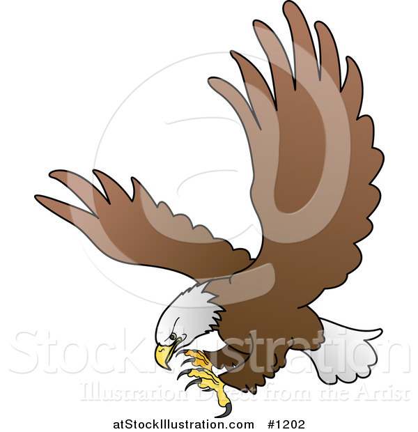 Vector Illustration of a Bald Eagle in Flight, Extending His Talons While Preparing to Grasp Prey