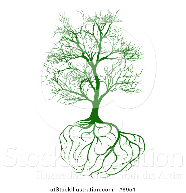Vector Illustration of a Bare Green Tree with Brain Roots