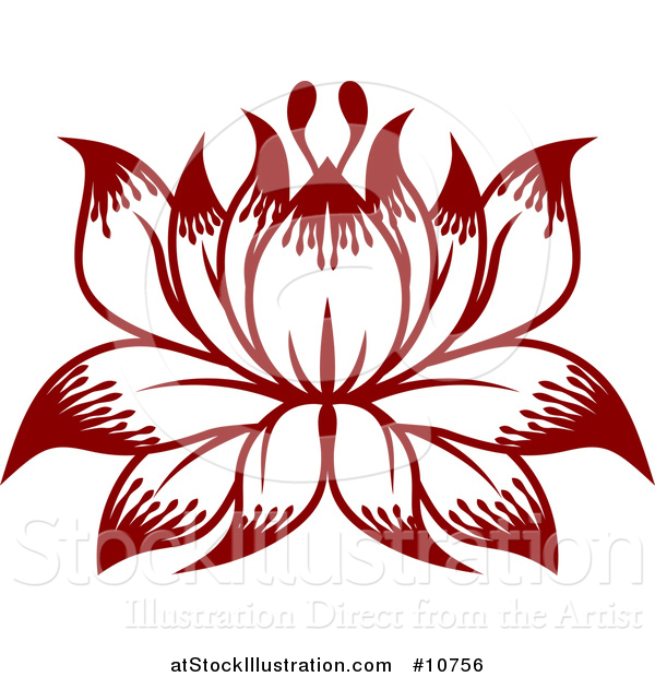 Vector Illustration of a Beautiful Lotus Water Lily Flower