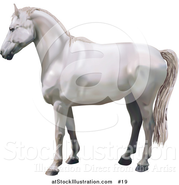 Vector Illustration of a Beautiful White Horse in Profile