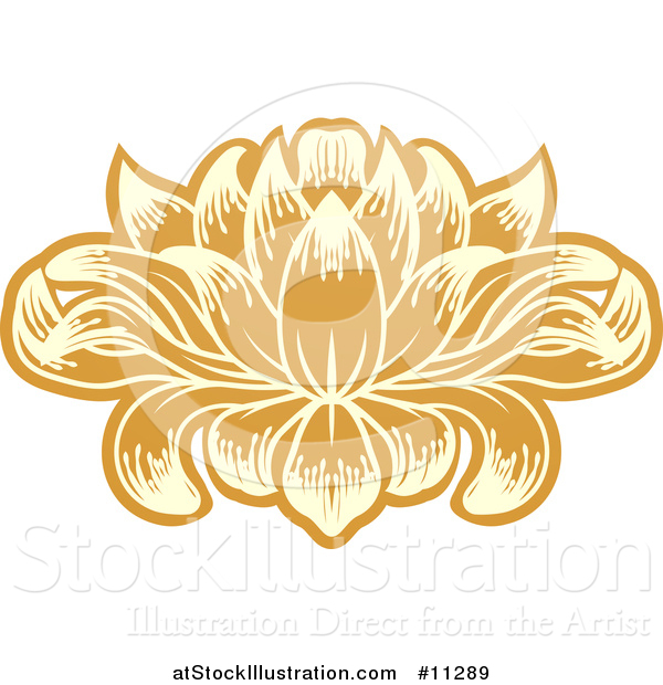 Vector Illustration of a Beautiful Yellow and Orange Water Lily Lotus Flower