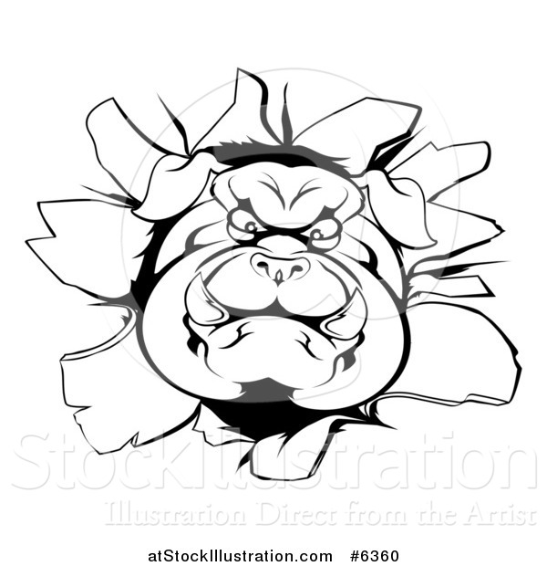 Vector Illustration of a Black and White Aggressive Bulldog Breaking Through a Wall