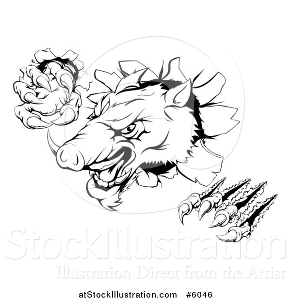 Vector Illustration of a Black and White Aggressive Clawed Boar Mascot Breaking Through a Wall