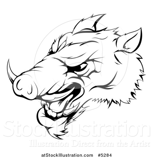 Vector Illustration of a Black and White Aggressive Razorback Boar Sports Mascot
