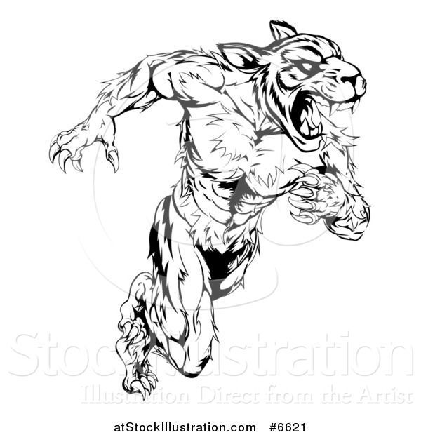 Vector Illustration of a Black and White Angry Fierce Muscular Sprinting Tiger Man Mascot